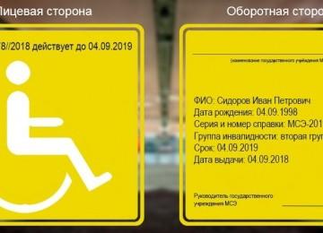 Как и где купить инвалидность: варианты оказываемой помощи в 2019 году