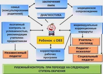 Основные различия в понятиях: дети с ОВЗ и дети-инвалиды